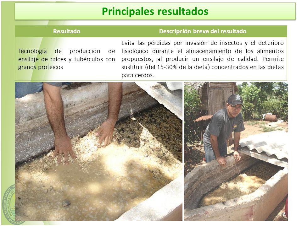 ResultadoDescripción breve del resultado Tecnología de producción de ensilaje de raíces y tubérculos con granos proteicos Evita las pérdidas por invas
