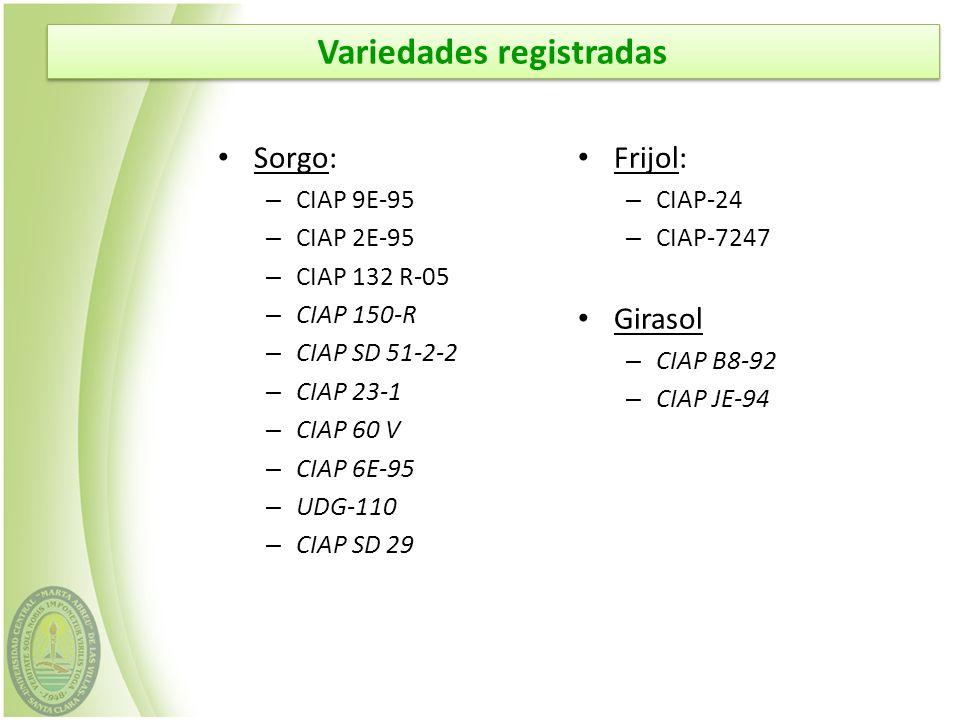 Sorgo: – CIAP 9E-95 – CIAP 2E-95 – CIAP 132 R-05 – CIAP 150-R – CIAP SD 51-2-2 – CIAP 23-1 – CIAP 60 V – CIAP 6E-95 – UDG-110 – CIAP SD 29 Frijol: – C