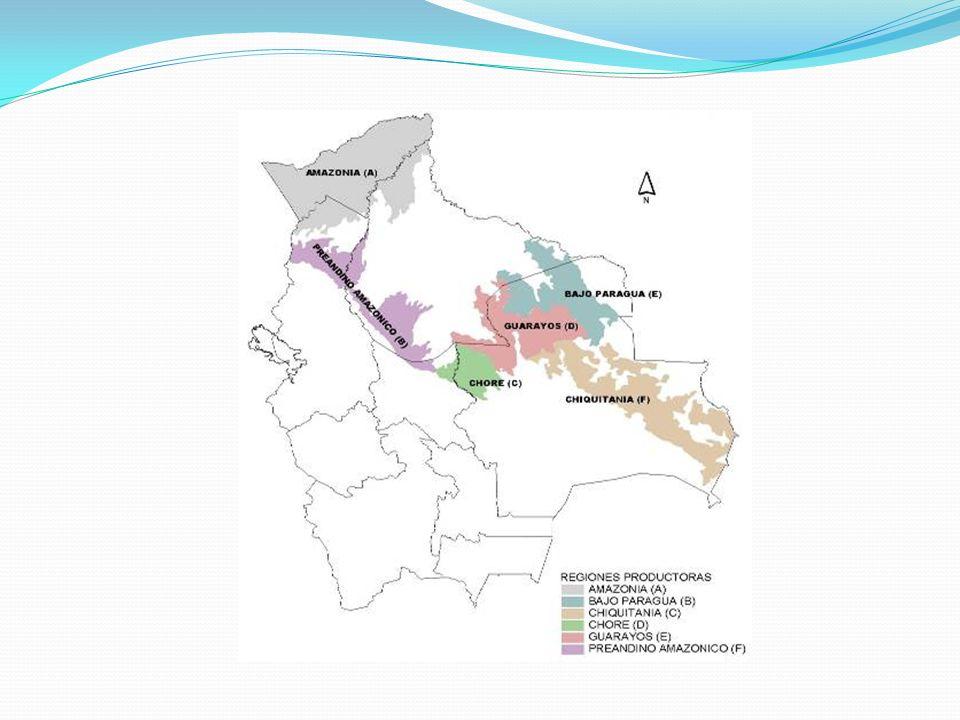 Tipo de derechoTipo de persona N° instrumentos aprobados PGMF Superficie (millones ha) Concesion en tierras fiscales - Empresas - ASL - Investigación 52 20 2 3,77 millones ha 0,47 millones ha 0,16 millones ha Autorizacion en comunidades en TCO Comunidad1102,06 millones ha Autorizacion en comunidades campesinas Comunidad1321,11 millones ha Autorizacion en propiedades privadas Propietarios individuales2861,49 millones ha Contratos a largo plazoEmpresas20,22 millones ha TOTAL DERECHOS6049,28 millones ha