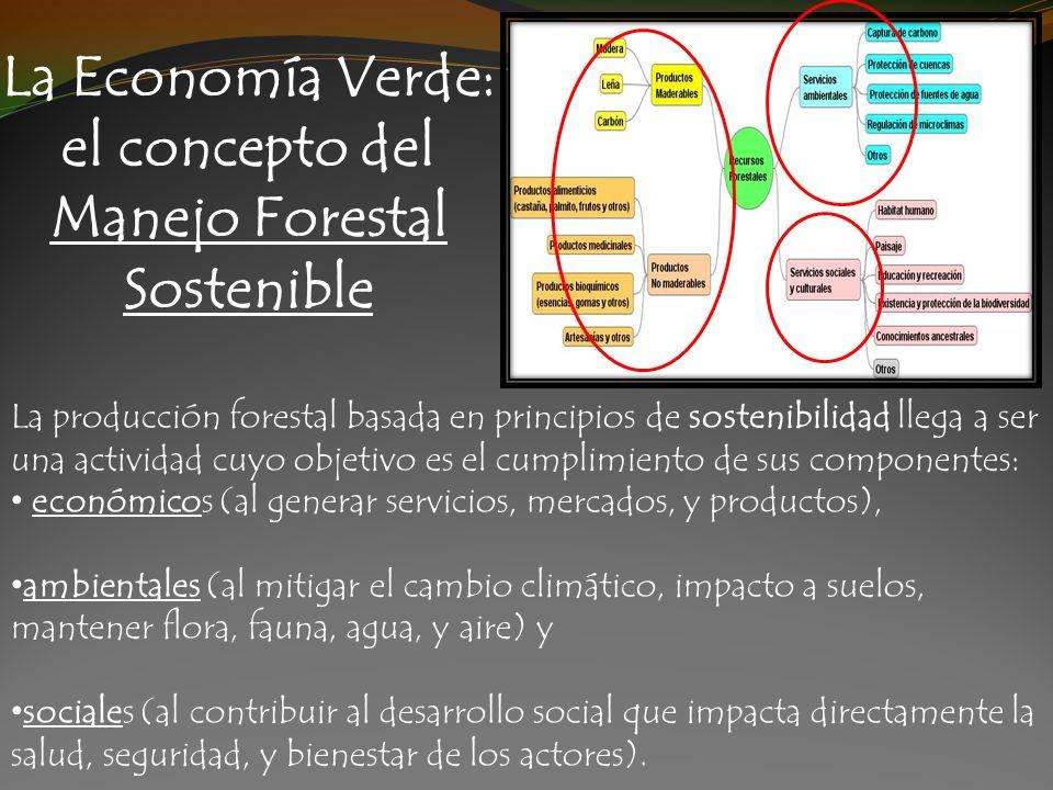 La producción forestal basada en principios de sostenibilidad llega a ser una actividad cuyo objetivo es el cumplimiento de sus componentes: económico