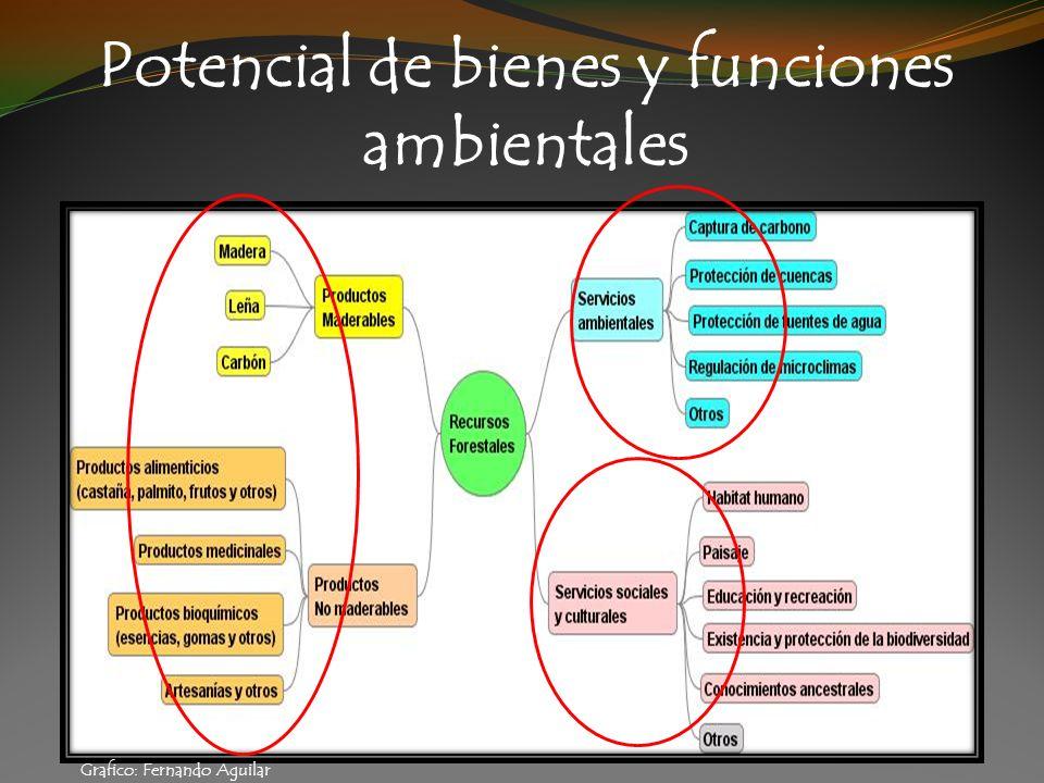 Potencial de bienes y funciones ambientales Grafico: Fernando Aguilar