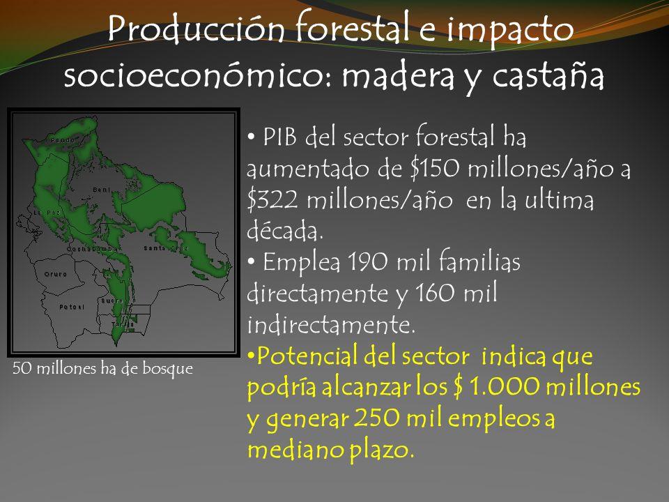 Producción forestal e impacto socioeconómico: madera y castaña PIB del sector forestal ha aumentado de $150 millones/año a $322 millones/año en la ult