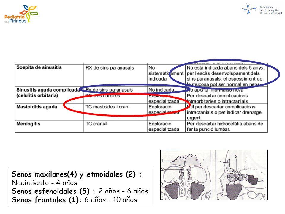 Senos maxilares(4) y etmoidales (2) : Nacimiento - 4 años Senos esfenoidales (5) : 2 años – 6 años Senos frontales (1): 6 años – 10 años