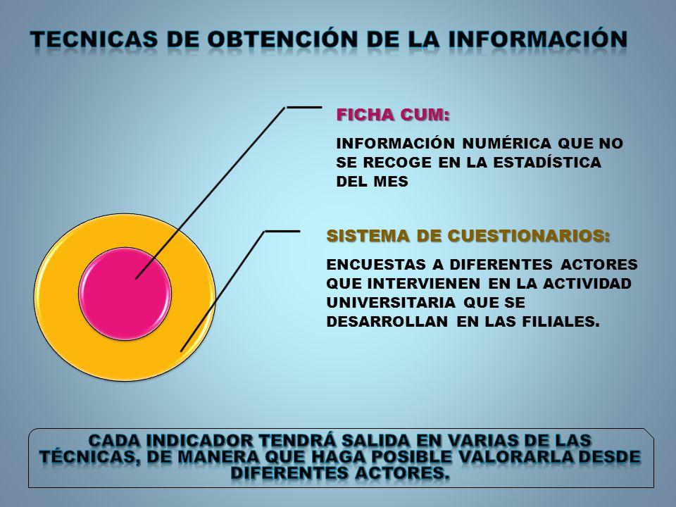 FICHA CUM: INFORMACIÓN NUMÉRICA QUE NO SE RECOGE EN LA ESTADÍSTICA DEL MES SISTEMA DE CUESTIONARIOS: ENCUESTAS A DIFERENTES ACTORES QUE INTERVIENEN EN LA ACTIVIDAD UNIVERSITARIA QUE SE DESARROLLAN EN LAS FILIALES.