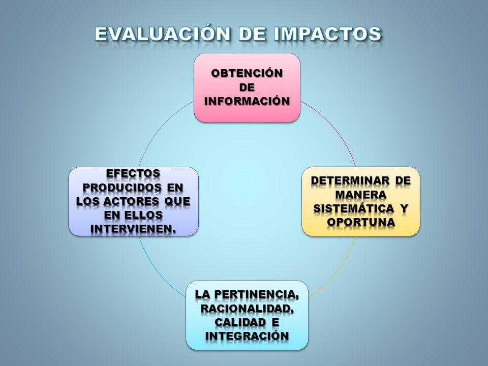 EVALUAR LOS IMPACTOS EN TODOS LOS PROCESOS UNIVERSITARIOS.