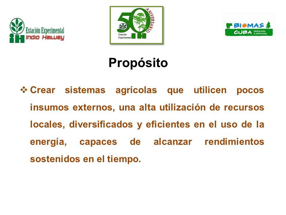 Bioproducto IHplus® a partir de microorganismos nativosPlantasPeq.