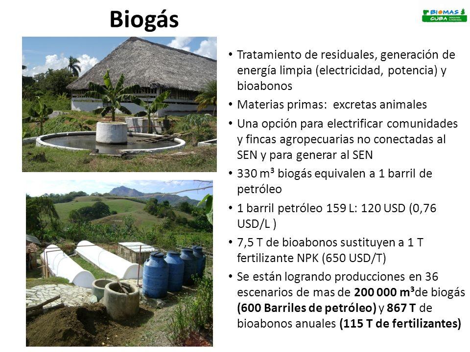 El reciclaje sistemático de nutrientes mantiene estable la productividad de la finca a pesar de la alta exportación de nutrientes.
