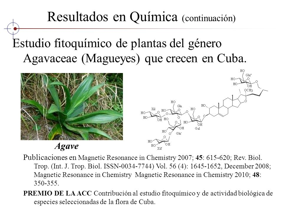 Resultados en Química (continuación) Estudio fitoquímico de plantas del género Agavaceae (Magueyes) que crecen en Cuba. Publicaciones en Magnetic Reso