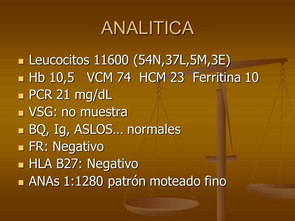 ANALITICA Leucocitos 11600 (54N,37L,5M,3E) Leucocitos 11600 (54N,37L,5M,3E) Hb 10,5 VCM 74 HCM 23 Ferritina 10 Hb 10,5 VCM 74 HCM 23 Ferritina 10 PCR