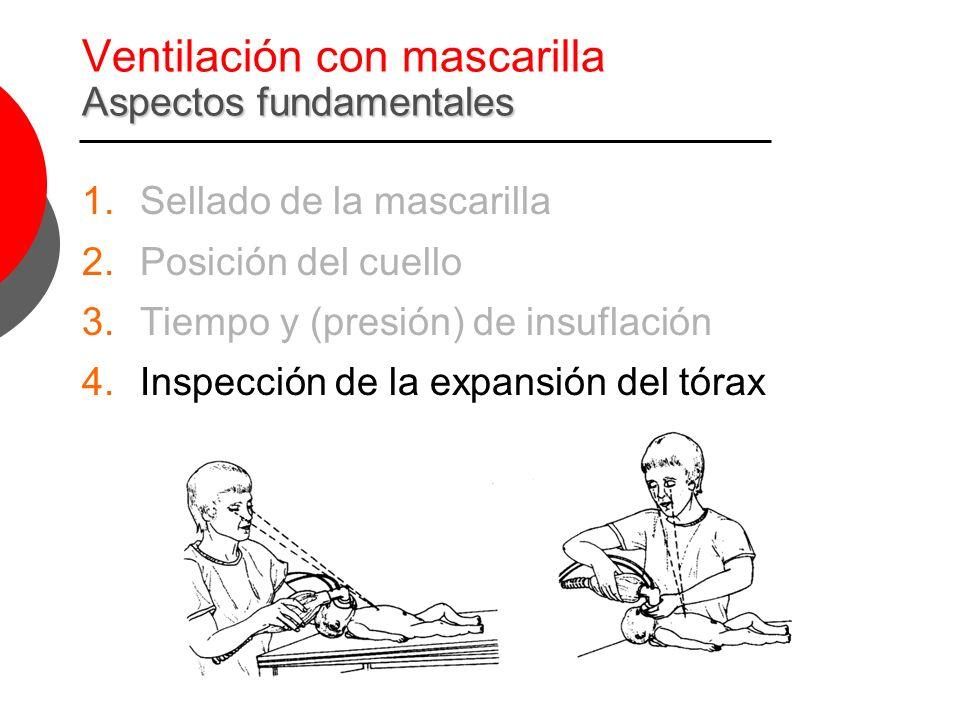 Aspectos fundamentales Ventilación con mascarilla Aspectos fundamentales 1.Sellado de la mascarilla 2.Posición del cuello 3.Tiempo y (presión) de insu
