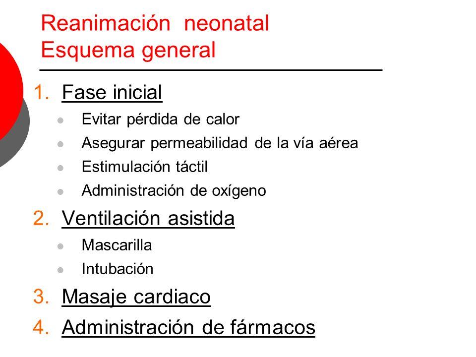 Reanimación neonatal Esquema general 1.Fase inicial Evitar pérdida de calor Asegurar permeabilidad de la vía aérea Estimulación táctil Administración de oxígeno 2.Ventilación asistida Mascarilla Intubación 3.Masaje cardiaco 4.Administración de fármacos 90-95 %