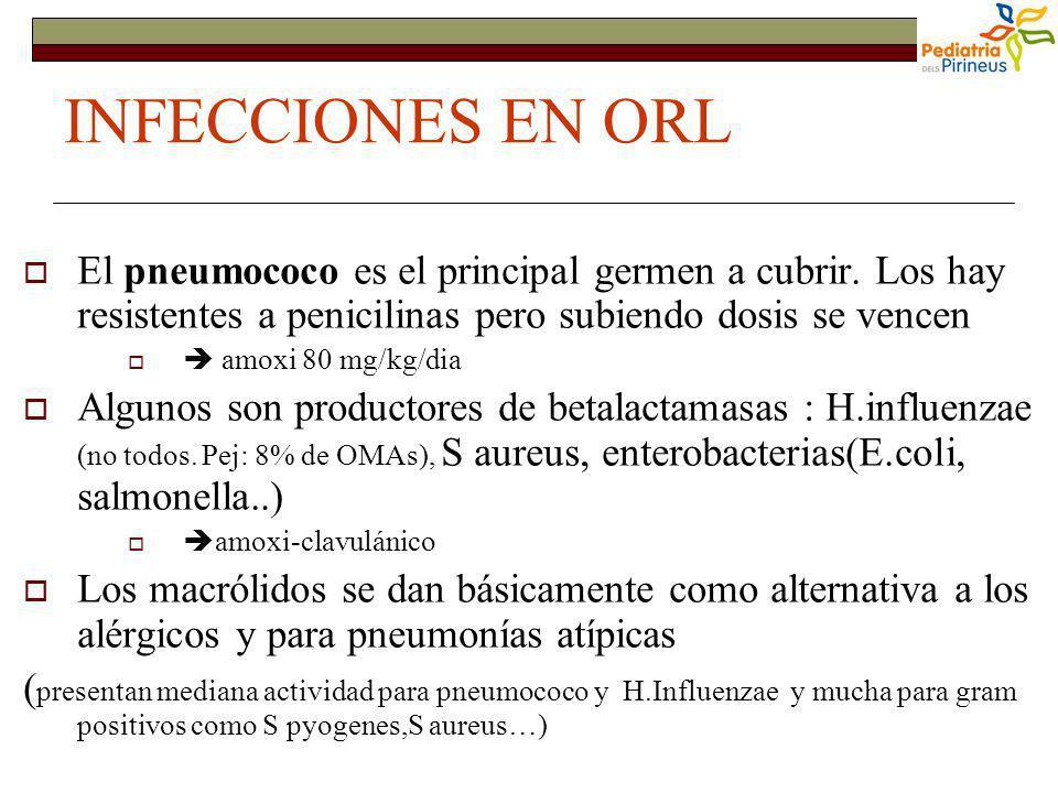 INFECCIONES EN ORL El pneumococo es el principal germen a cubrir. Los hay resistentes a penicilinas pero subiendo dosis se vencen amoxi 80 mg/kg/dia A