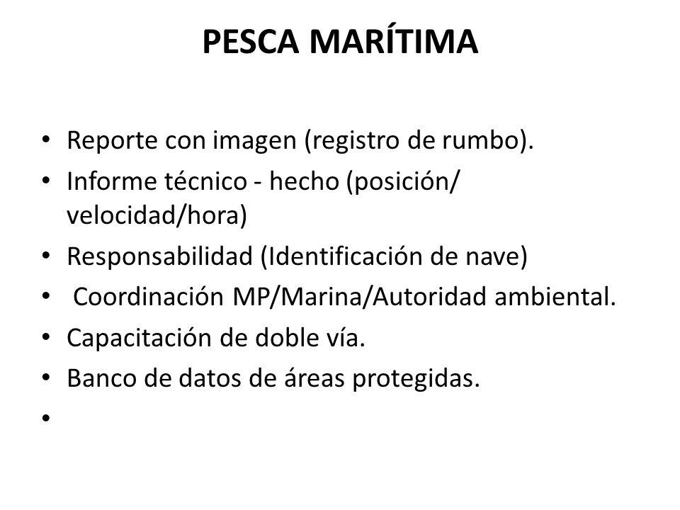 PESCA MARÍTIMA Reporte con imagen (registro de rumbo). Informe técnico - hecho (posición/ velocidad/hora) Responsabilidad (Identificación de nave) Coo