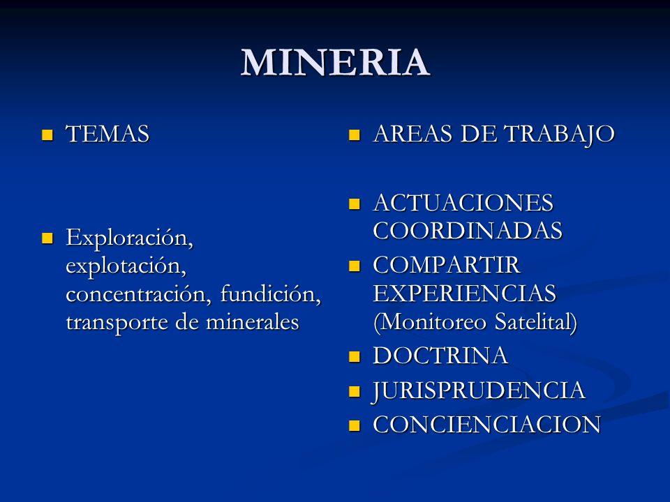 MINERIA TEMAS TEMAS Exploración, explotación, concentración, fundición, transporte de minerales Exploración, explotación, concentración, fundición, transporte de minerales AREAS DE TRABAJO ACTUACIONES COORDINADAS COMPARTIR EXPERIENCIAS (Monitoreo Satelital) DOCTRINA JURISPRUDENCIA CONCIENCIACION