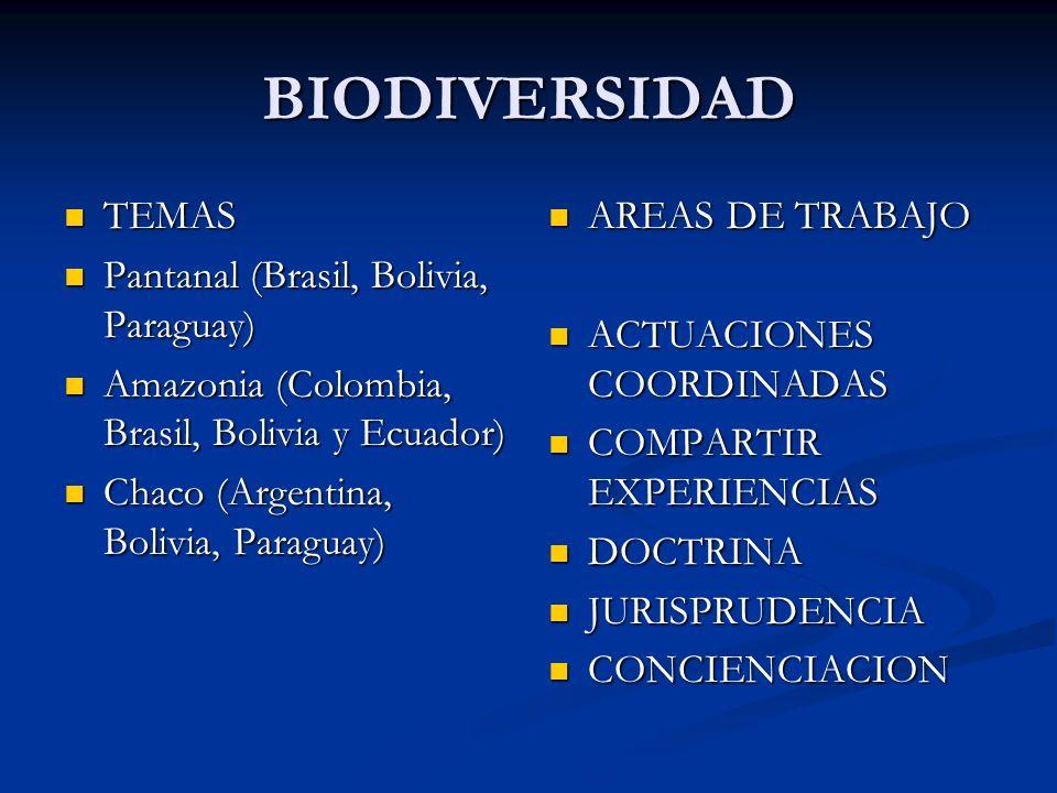 BIODIVERSIDAD TEMAS TEMAS Pantanal (Brasil, Bolivia, Paraguay) Pantanal (Brasil, Bolivia, Paraguay) Amazonia (Colombia, Brasil, Bolivia y Ecuador) Amazonia (Colombia, Brasil, Bolivia y Ecuador) Chaco (Argentina, Bolivia, Paraguay) Chaco (Argentina, Bolivia, Paraguay) AREAS DE TRABAJO ACTUACIONES COORDINADAS COMPARTIR EXPERIENCIAS DOCTRINA JURISPRUDENCIA CONCIENCIACION
