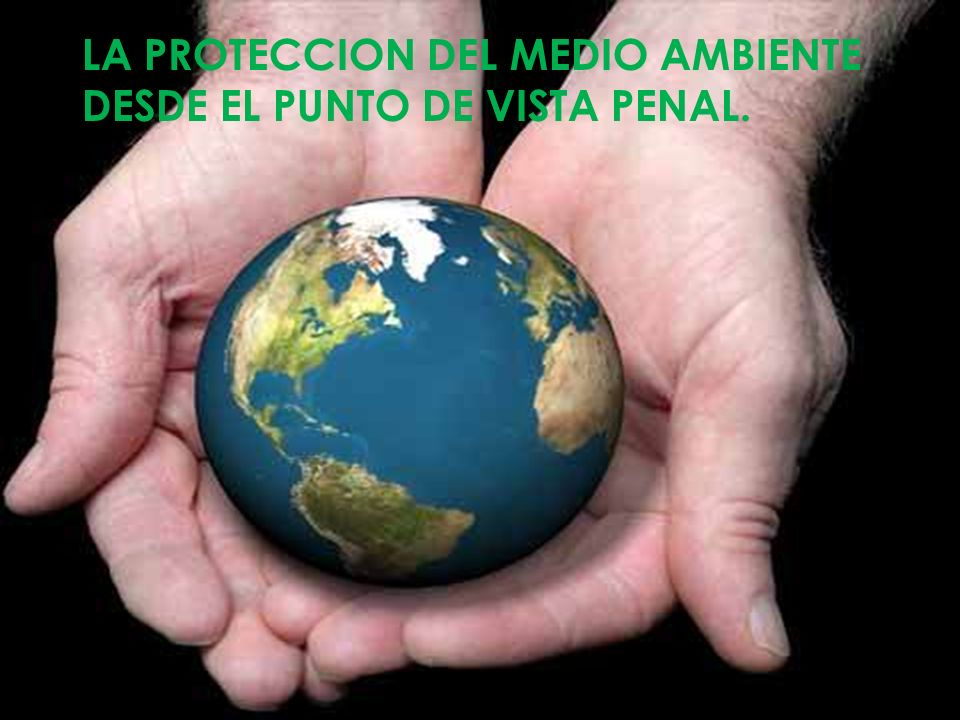 LA PROTECCION DEL MEDIO AMBIENTE DESDE EL PUNTO DE VISTA PENAL.