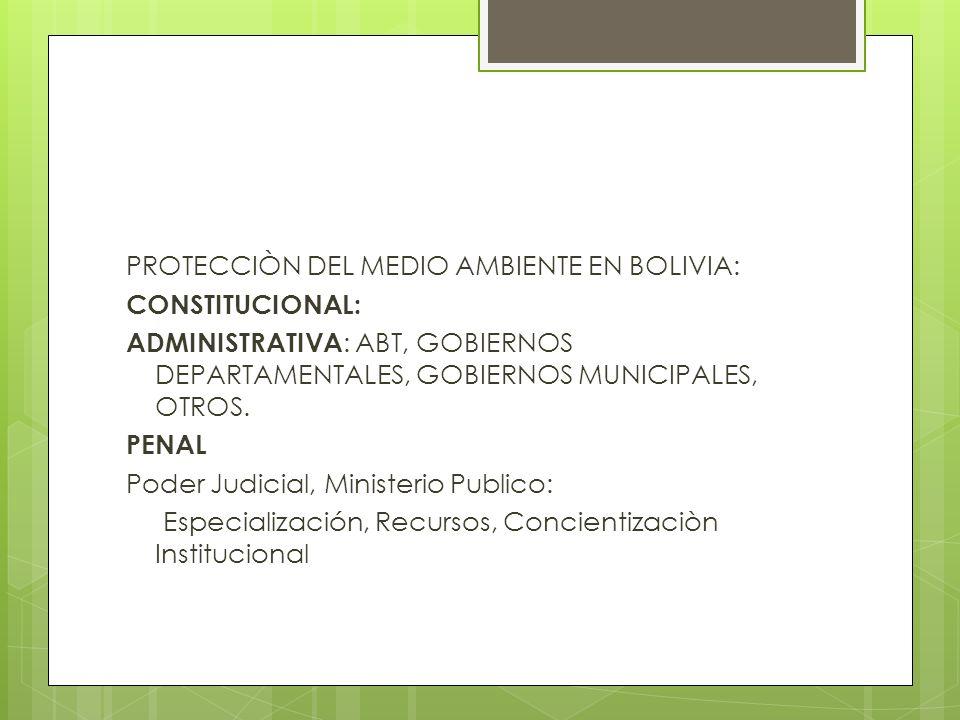 PROTECCIÒN DEL MEDIO AMBIENTE EN BOLIVIA: CONSTITUCIONAL: ADMINISTRATIVA : ABT, GOBIERNOS DEPARTAMENTALES, GOBIERNOS MUNICIPALES, OTROS. PENAL Poder J