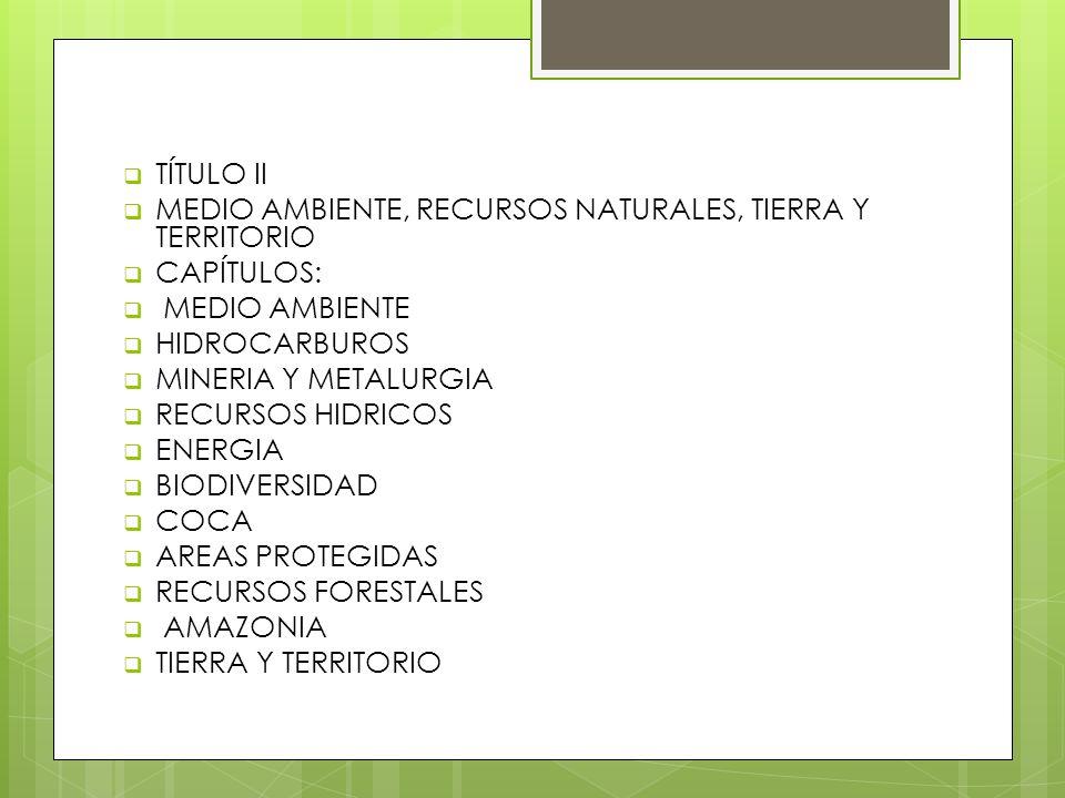 TÍTULO II MEDIO AMBIENTE, RECURSOS NATURALES, TIERRA Y TERRITORIO CAPÍTULOS: MEDIO AMBIENTE HIDROCARBUROS MINERIA Y METALURGIA RECURSOS HIDRICOS ENERG