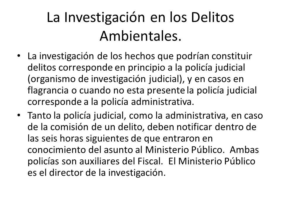 Organización de la Fiscalía en la Persecución de Delitos Ambientales.