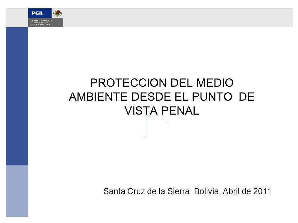 Santa Cruz de la Sierra, Bolivia, Abril de 2011 PROTECCION DEL MEDIO AMBIENTE DESDE EL PUNTO DE VISTA PENAL