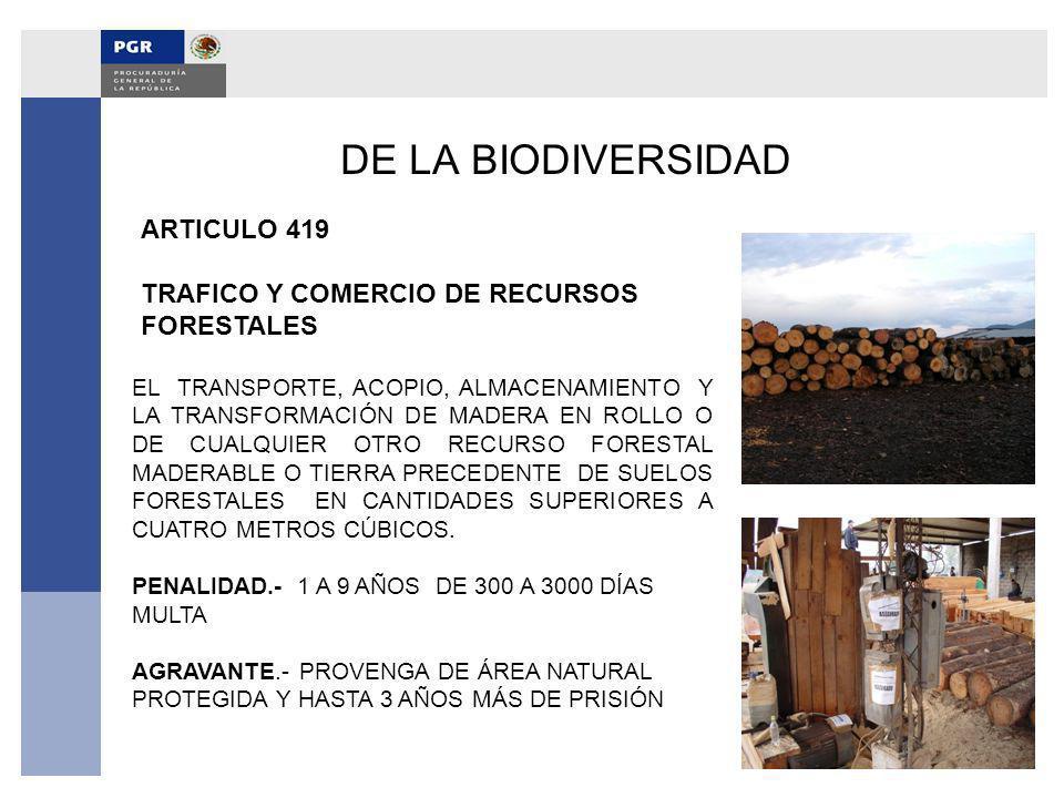 DE LA BIODIVERSIDAD ARTICULO 419 TRAFICO Y COMERCIO DE RECURSOS FORESTALES EL TRANSPORTE, ACOPIO, ALMACENAMIENTO Y LA TRANSFORMACIÓN DE MADERA EN ROLL