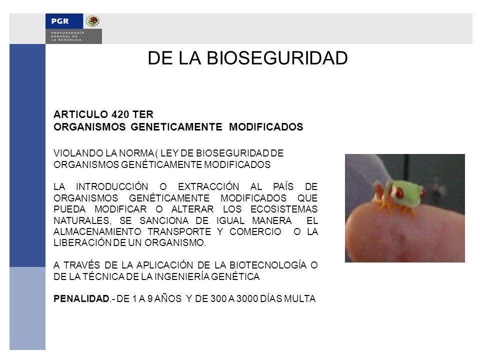DE LA BIOSEGURIDAD ARTICULO 420 TER ORGANISMOS GENETICAMENTE MODIFICADOS VIOLANDO LA NORMA ( LEY DE BIOSEGURIDAD DE ORGANISMOS GENÉTICAMENTE MODIFICAD