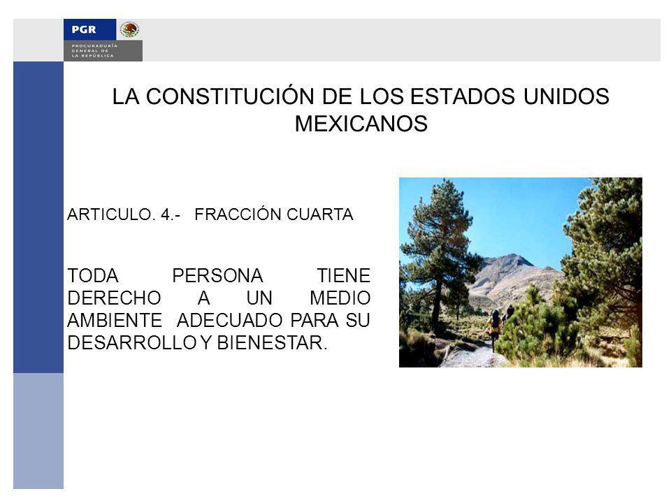 LA CONSTITUCIÓN DE LOS ESTADOS UNIDOS MEXICANOS ARTICULO. 4.- FRACCIÓN CUARTA TODA PERSONA TIENE DERECHO A UN MEDIO AMBIENTE ADECUADO PARA SU DESARROL