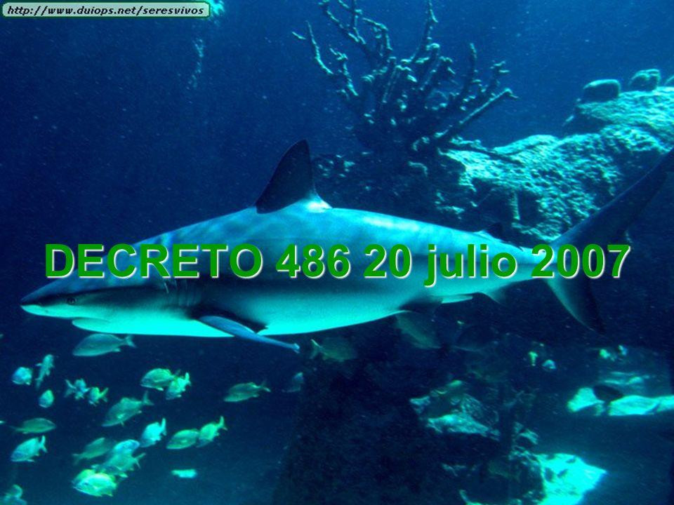 DECRETO 486 20 julio 2007
