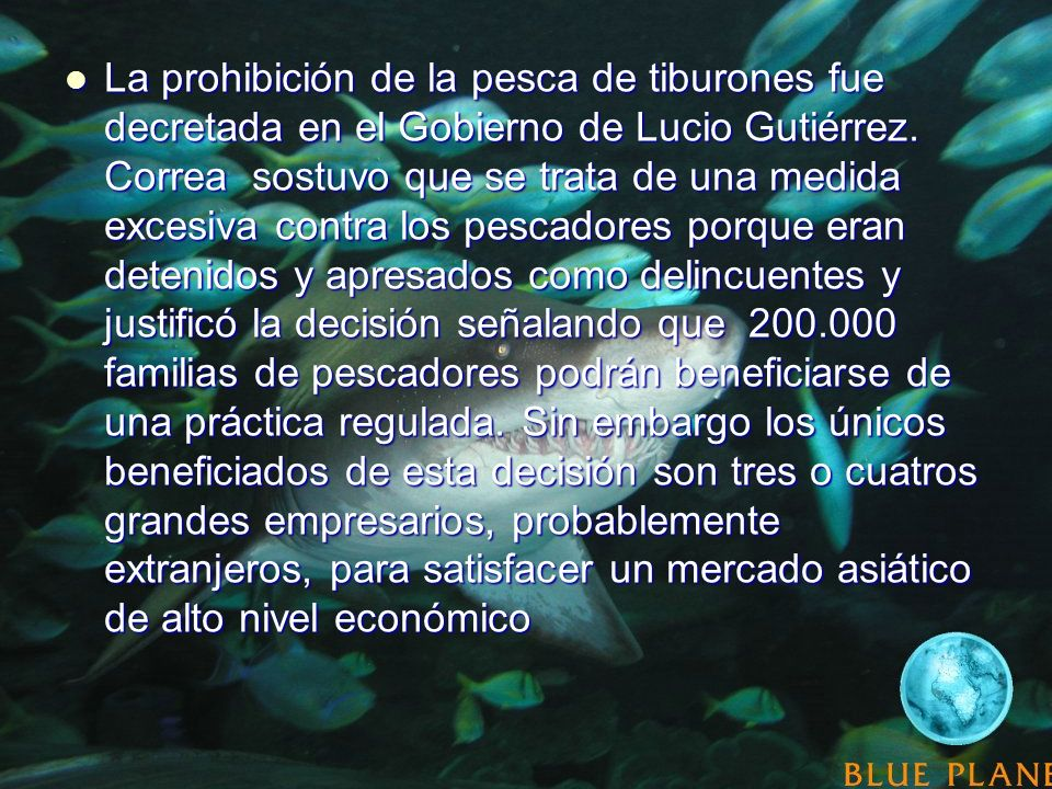 La prohibición de la pesca de tiburones fue decretada en el Gobierno de Lucio Gutiérrez. Correa sostuvo que se trata de una medida excesiva contra los