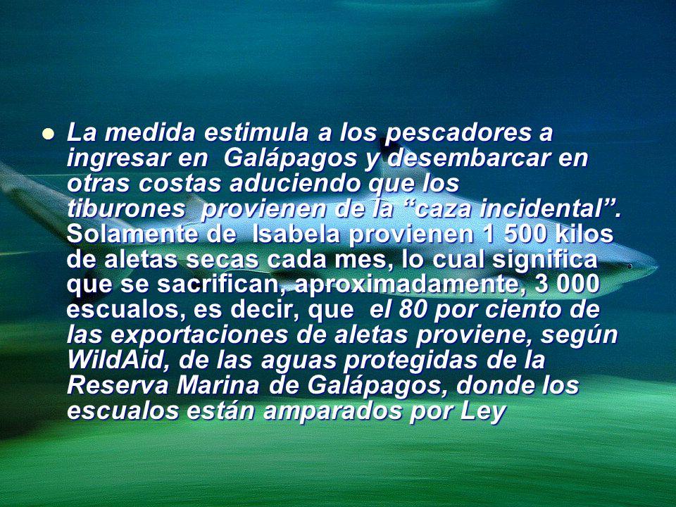 La medida estimula a los pescadores a ingresar en Galápagos y desembarcar en otras costas aduciendo que los tiburones provienen de la caza incidental.
