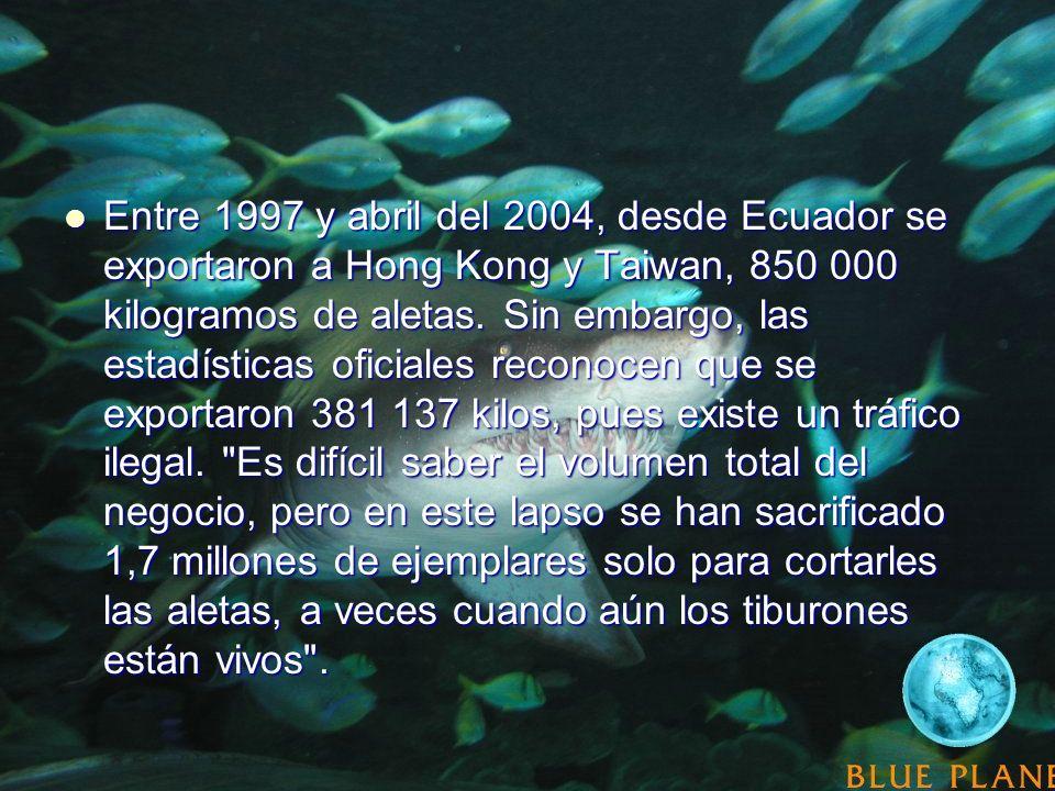Entre 1997 y abril del 2004, desde Ecuador se exportaron a Hong Kong y Taiwan, 850 000 kilogramos de aletas. Sin embargo, las estadísticas oficiales r