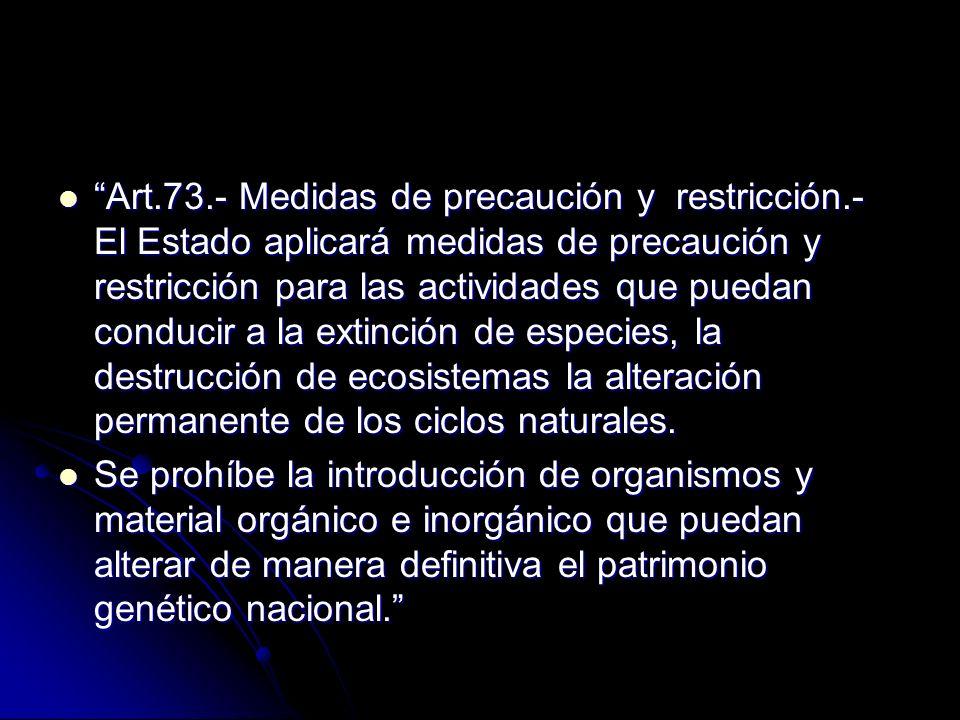 Art.73.- Medidas de precaución y restricción.- El Estado aplicará medidas de precaución y restricción para las actividades que puedan conducir a la ex