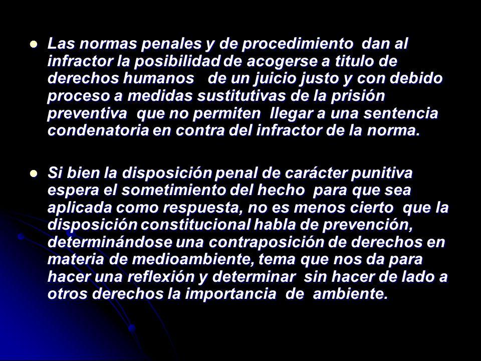 Las normas penales y de procedimiento dan al infractor la posibilidad de acogerse a titulo de derechos humanos de un juicio justo y con debido proceso