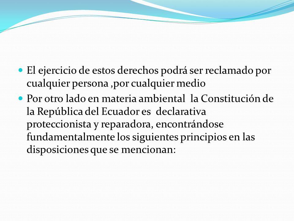 El ejercicio de estos derechos podrá ser reclamado por cualquier persona,por cualquier medio Por otro lado en materia ambiental la Constitución de la