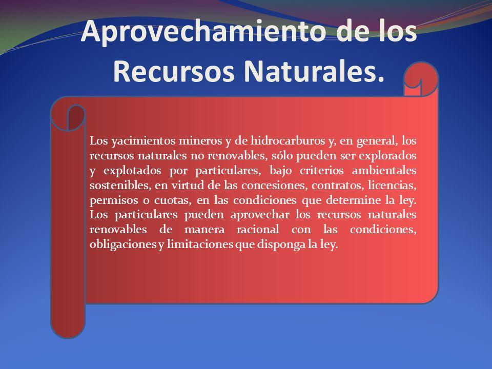 Aprovechamiento de los Recursos Naturales. Los yacimientos mineros y de hidrocarburos y, en general, los recursos naturales no renovables, sólo pueden