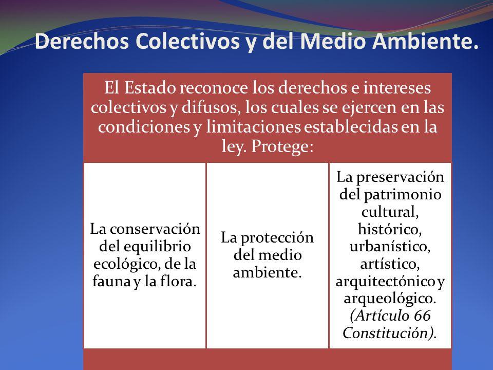 Derechos Colectivos y del Medio Ambiente. El Estado reconoce los derechos e intereses colectivos y difusos, los cuales se ejercen en las condiciones y