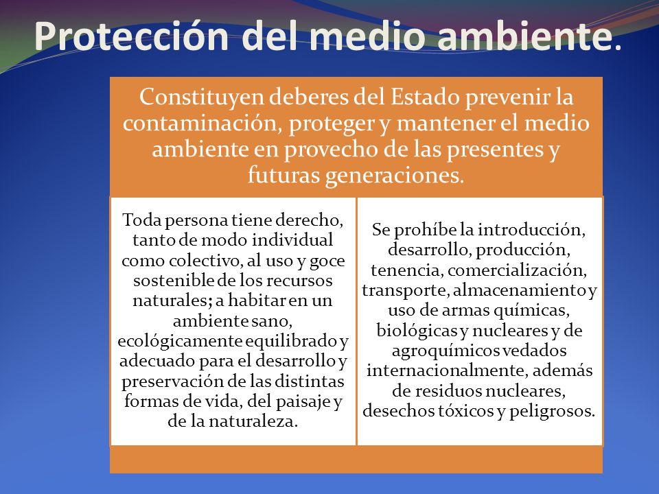 Protección del medio ambiente. Constituyen deberes del Estado prevenir la contaminación, proteger y mantener el medio ambiente en provecho de las pres