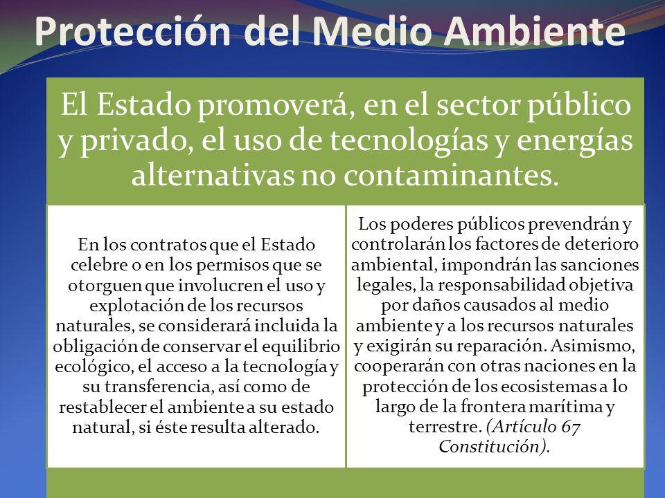 Protección del Medio Ambiente El Estado promoverá, en el sector público y privado, el uso de tecnologías y energías alternativas no contaminantes. En