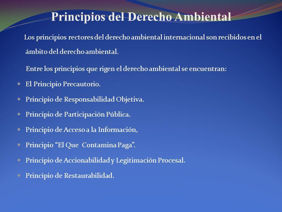 Principios del Derecho Ambiental Los principios rectores del derecho ambiental internacional son recibidos en el ámbito del derecho ambiental. Entre l