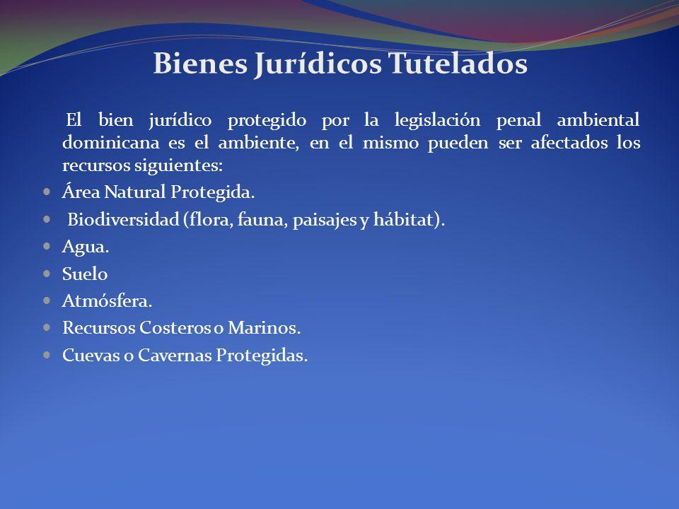 Bienes Jurídicos Tutelados El bien jurídico protegido por la legislación penal ambiental dominicana es el ambiente, en el mismo pueden ser afectados l
