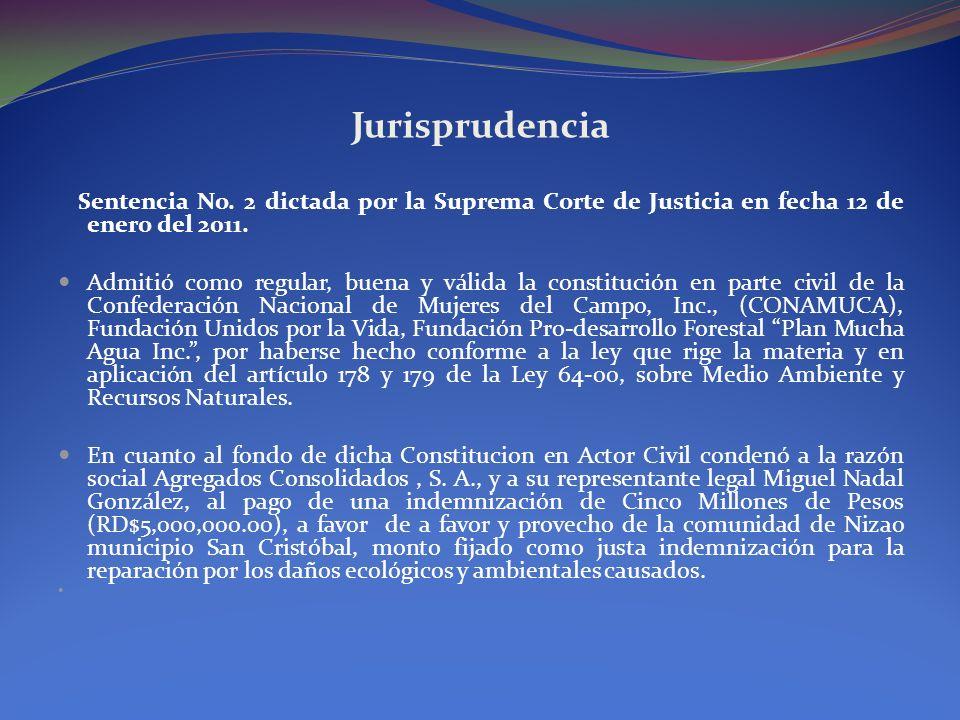 Jurisprudencia Sentencia No. 2 dictada por la Suprema Corte de Justicia en fecha 12 de enero del 2011. Admitió como regular, buena y válida la constit