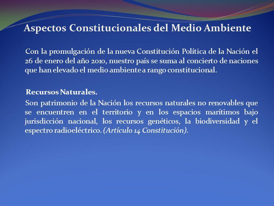 Aspectos Constitucionales del Medio Ambiente Con la promulgación de la nueva Constitución Política de la Nación el 26 de enero del año 2010, nuestro p