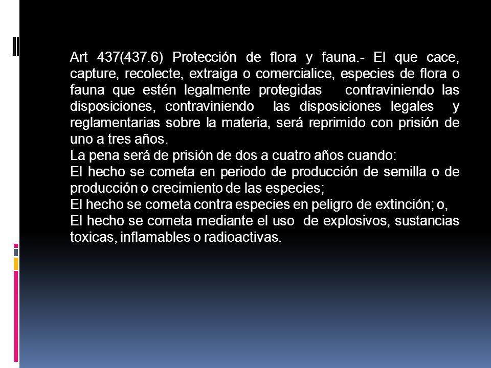 Art 437(437.6) Protección de flora y fauna.- El que cace, capture, recolecte, extraiga o comercialice, especies de flora o fauna que estén legalmente