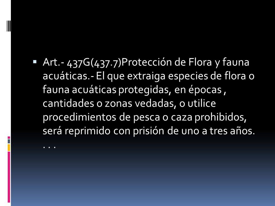 Art.- 437G(437.7)Protección de Flora y fauna acuáticas.- El que extraiga especies de flora o fauna acuáticas protegidas, en épocas, cantidades o zonas