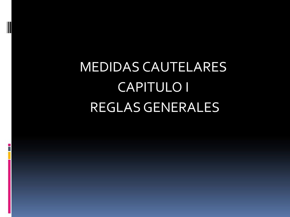 MEDIDAS CAUTELARES CAPITULO I REGLAS GENERALES