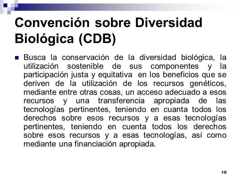 10 Convención sobre Diversidad Biológica (CDB) Busca la conservación de la diversidad biológica, la utilización sostenible de sus componentes y la par