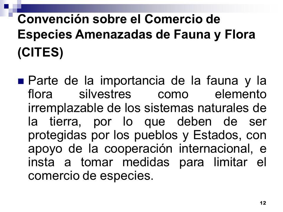12 Convención sobre el Comercio de Especies Amenazadas de Fauna y Flora (CITES) Parte de la importancia de la fauna y la flora silvestres como element