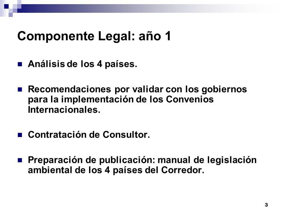 3 Componente Legal: año 1 Análisis de los 4 países. Recomendaciones por validar con los gobiernos para la implementación de los Convenios Internaciona