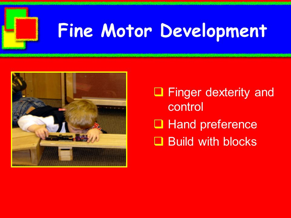 Fine Motor Development Finger dexterity and control Hand preference Build with blocks