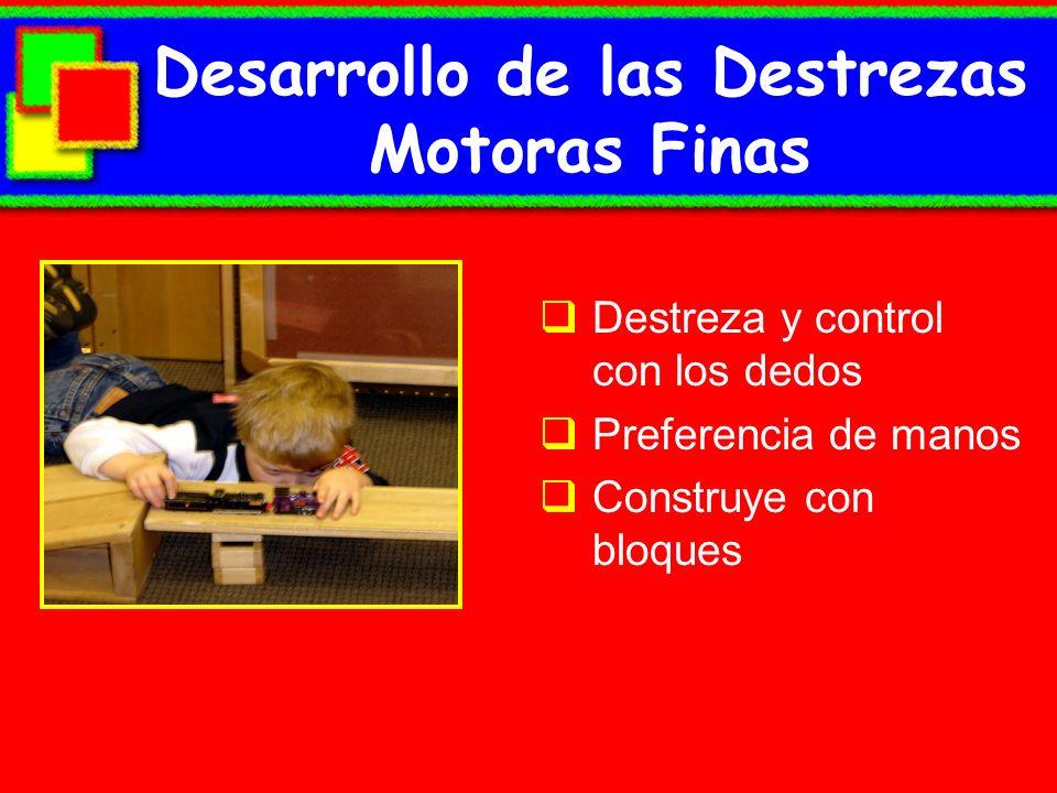 Desarrollo de las Destrezas Motoras Finas Destreza y control con los dedos Preferencia de manos Construye con bloques
